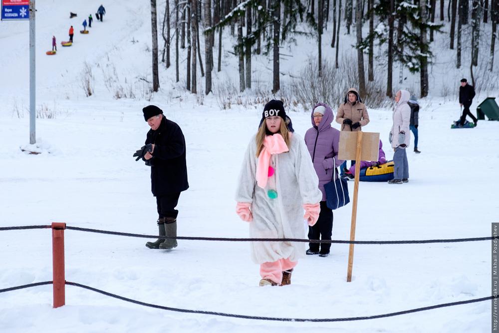 День снега 2017