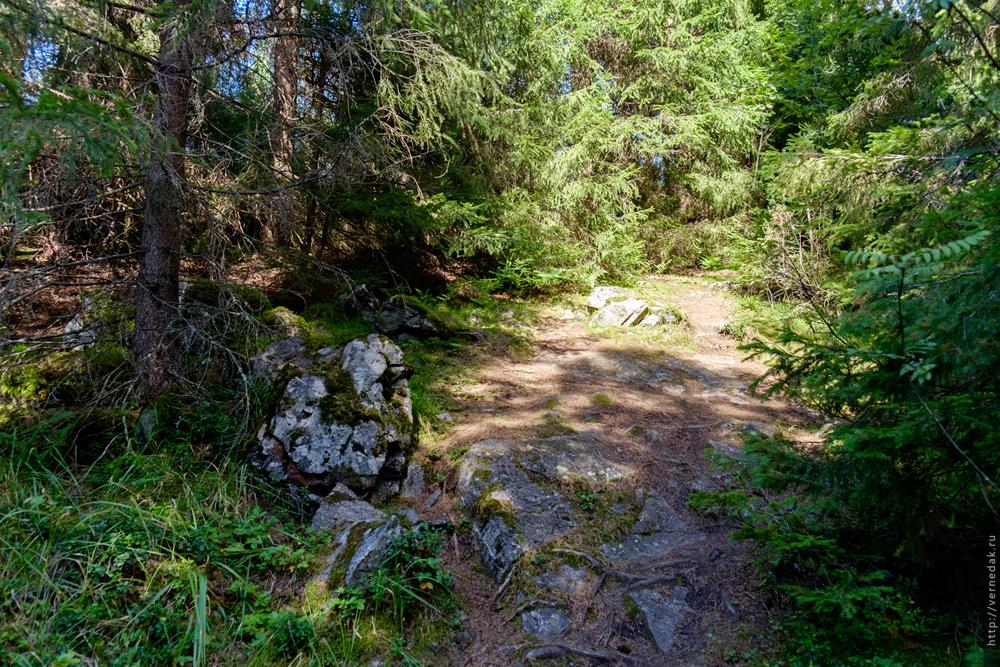 Карелия. Часть 3. Гора Паасо